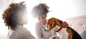 How to Make Your Home Pet-Friendly